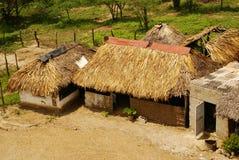 Perú, paisaje peruano de Amazonas. El acuerdo indio típico de las tribus del presente de la foto en el Amazonas fotos de archivo libres de regalías