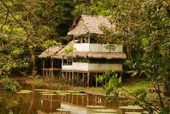 Perú, paisaje peruano de Amazonas. El acuerdo indio típico de las tribus del presente de la foto en el Amazonas imagen de archivo