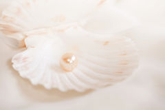 perła fotografia stock