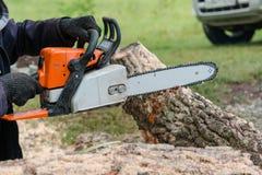 Per ha visto una sega della benzina dell'albero L'uomo sega un albero Il silvicoltore con una sega Fotografia Stock