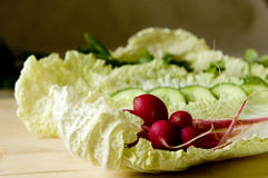 Per insalata Fotografie Stock
