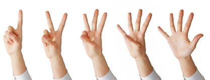 Per la matematica della mano Fotografia Stock Libera da Diritti