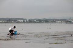 per prendere le coperture a Hamamatsu Giappone, la gente a catach e raccogliere le coperture o pescare fotografia stock