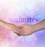 Per sempre il mio Soulmate Immagini Stock Libere da Diritti