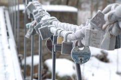 Per sempre unione, inverno Immagini Stock