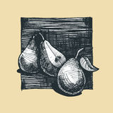 Pera Imagen de archivo