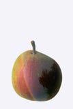 Pera, albero e Rainbow Fotografia Stock