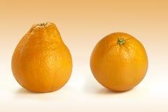 Pera anaranjada Fotografía de archivo libre de regalías