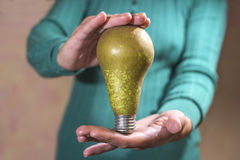 Pera della lampada di energia di Eco Fotografie Stock Libere da Diritti