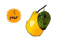 Pera disegnata a mano del fumetto nei colori gialli ed arancio con la foglia verde isolata su bianco Retro distintivo dell'etiche illustrazione di stock