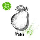 Pera disegnata a mano di schizzo con il manifesto dell'autoadesivo della foglia Vitamina e vettore sano della frutta Immagine Stock Libera da Diritti