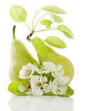 Peras e flor Imagens de Stock