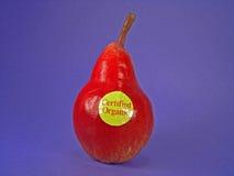 Pera organica certificata rossa Fotografia Stock