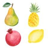 Pera, piña, granada y limón Fotografía de archivo libre de regalías