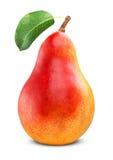 Pera rossa matura Fotografia Stock