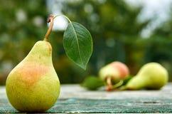 A pera verde com as folhas no marrom verde de madeira envelheceu o fim do fundo da textura acima Duas peras no fundo borrado da n Foto de Stock Royalty Free