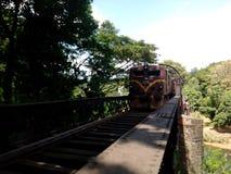 Peradeniya nero del ponte Immagini Stock