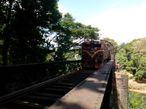 Peradeniya preto da ponte Imagens de Stock