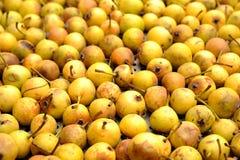 Peras amarelas Fotografia de Stock