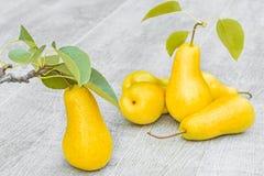 Peras amarelas no fundo de madeira cinzento, close-up Fotos de Stock