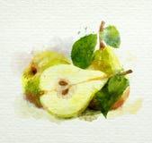 Peras amarillas con las hojas en un fondo blanco. Pintura de la acuarela Foto de archivo