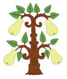 Peras desenhadas com as folhas na árvore Fotografia de Stock