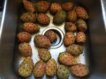 Peras espinosas Fotos de archivo