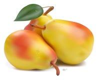 Peras frescas com folha Fotografia de Stock Royalty Free