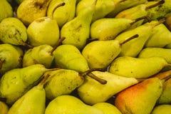 Peras frescas do pomar Valencian fotos de stock