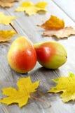 Peras. Fruta. Imágenes de archivo libres de regalías