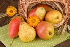 Peras maduras Autumn Still Life Imagenes de archivo