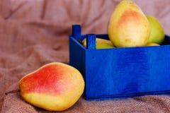 Peras maduras en una caja de madera azul fotos de archivo libres de regalías