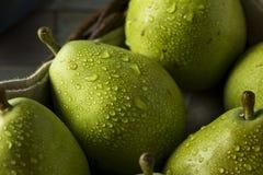 Peras orgánicas verdes crudas de Danjou Imágenes de archivo libres de regalías