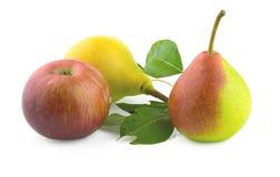 Peras y manzana Fotografía de archivo