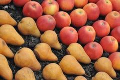 Peras y manzanas Foto de archivo libre de regalías