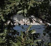 Perast stad i Montenegro i Adriatiskt havet royaltyfria bilder