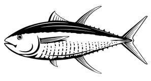 Perca gialla Tuna Black e pesce bianco Fotografia Stock