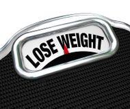 Perca a gordura de perda excesso de peso da escala das palavras do peso Fotos de Stock