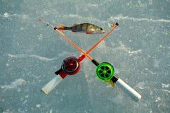 Perca y dos cañas de pescar Fotografía de archivo libre de regalías
