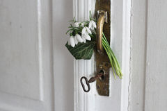 Perce-neige dans la porte Image libre de droits
