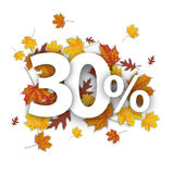 30 Percent Autumn Foliage. 30 with percent and foliage on the white Royalty Free Stock Photo