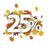 25 Percent Autumn Foliage Royalty Free Stock Photos