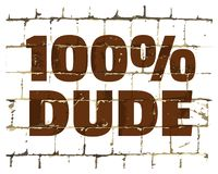 100 percent Dude printed on stylized brick wall. Textured humorous inscription for your design. Vector. Illustration stock illustration