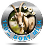 100 Percent Goat Milk- Metal Icon. Metallic round icon or symbol with a head of horned goat, three daisy flowers and text 100 % Goat Milk. on white background stock illustration