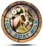 100 Percent Goat Milk- Wooden Icon. Wooden round icon or symbol with a head of horned goat, three daisy flowers and text 100 % Goat Milk. on white background stock illustration