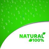 100 percent natural product. Green background, template for your projects. Realistic drops of water. Pure freshness. Rounded cut w. Ith text. Vector illustration stock illustration