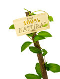 100 percent natural sign message on a wooden panel and green pla. Nt - image is isolated on a white background Stock Photo