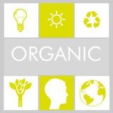 100 percent organic. Design, vector illustration eps10 graphic vector illustration
