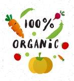 100 percent organic. Handwritten lettering inscription. Concept for restaurant menu backdrop, smoothies bar, eco market stock illustration