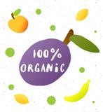100 percent organic. Handwritten lettering inscription. And illustration of plum, apple, lemon, banana royalty free illustration